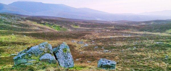 Snowdonia's Best Kept Trail Running Secret? Uwchgwyfai Common