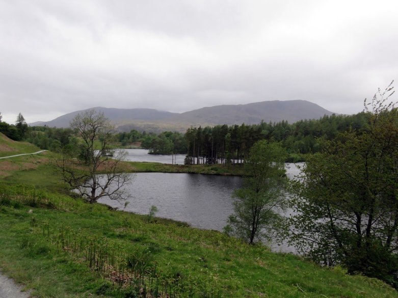 Walk around Tarn Hows and up Black Fell