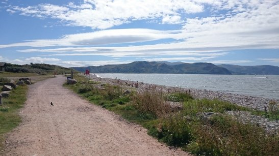 WCP_Conwy_003