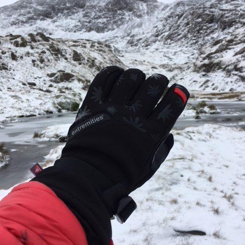 Extremities Women's Primaloft Mountain Glove