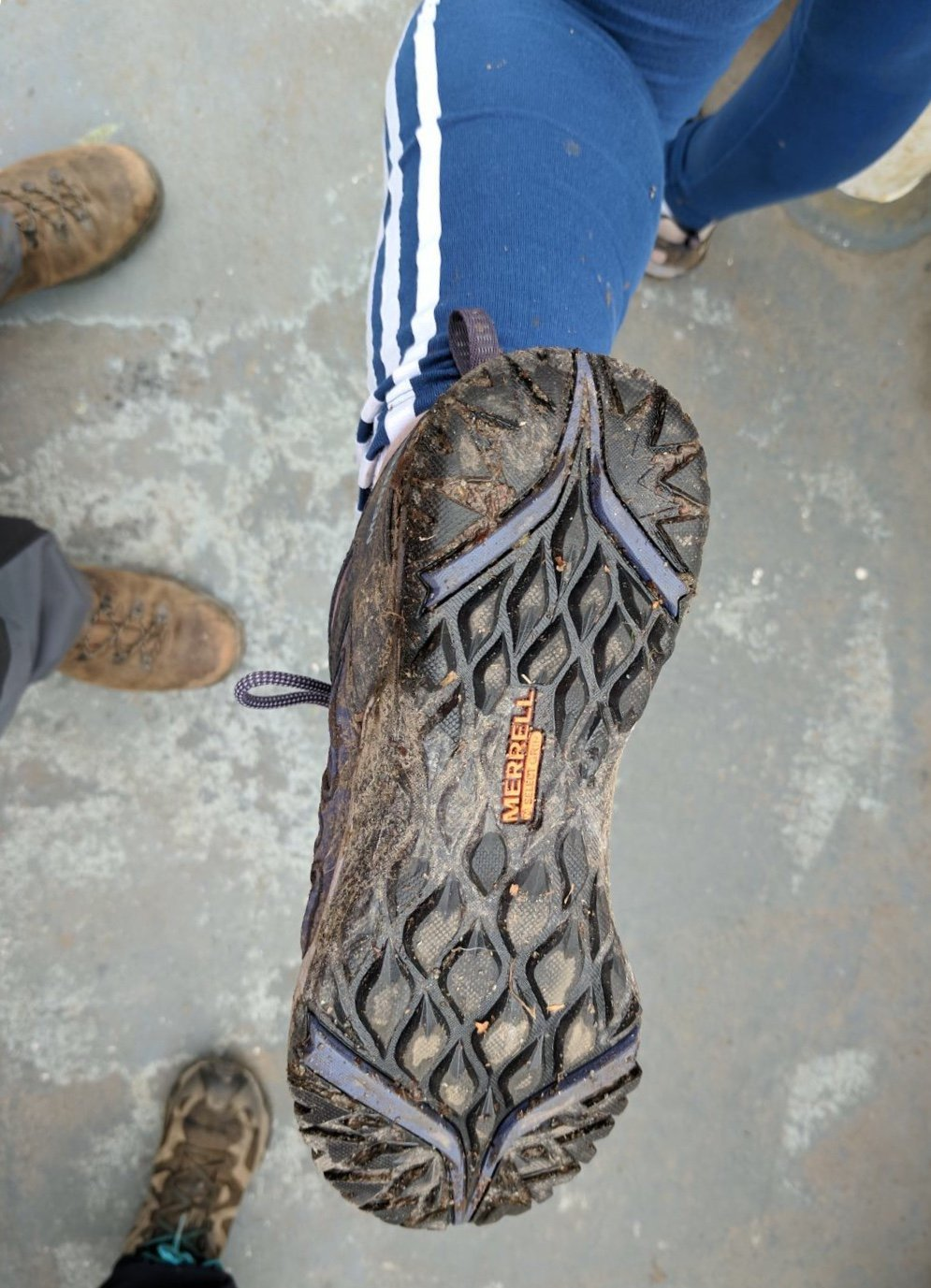 17efe2116c5 Merrell Siren Sport Q2 Ladies Walking Shoes Review