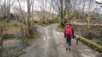 Carnedd Dafydd Llewelyn (2 of 40)