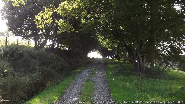 Cambrian Way Stage 12 – Comins Coch to Dinas Mawddwy