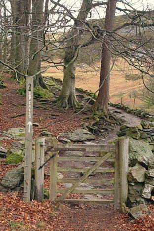 Walk up Cadair Berwyn from Pistyll Rhaeadr - Wild Route