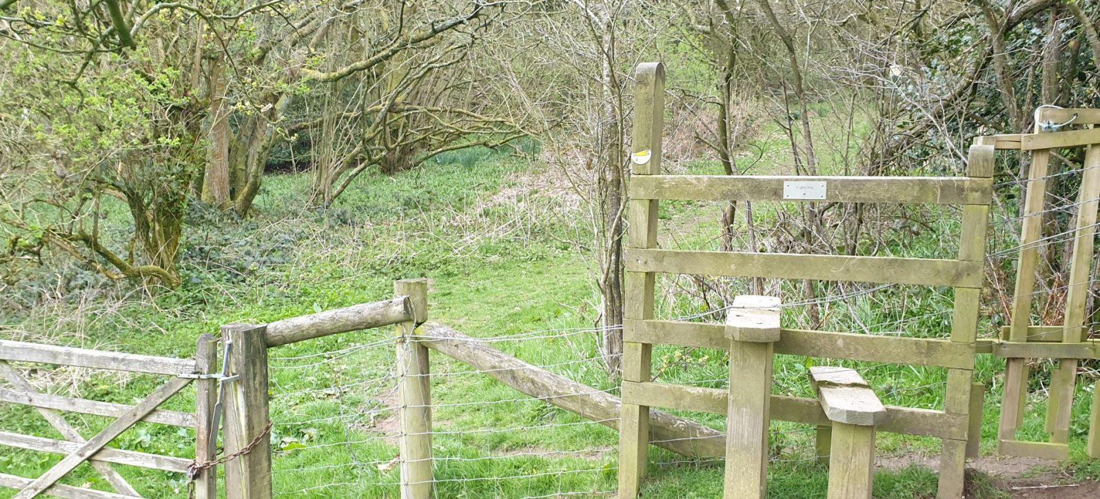 Walk up Caer Caradoc Hill from Church Stretton
