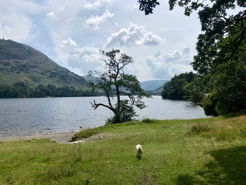 The Ullswater Way - Aira Force to Glenridding