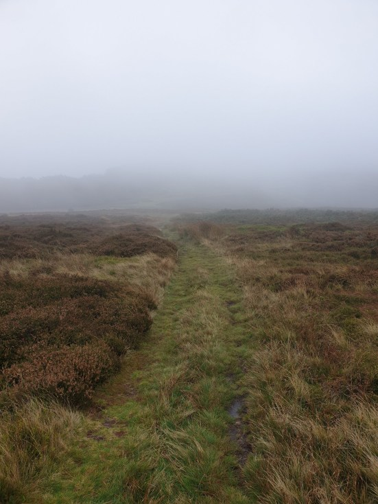 Brown_Clee_Hill_32