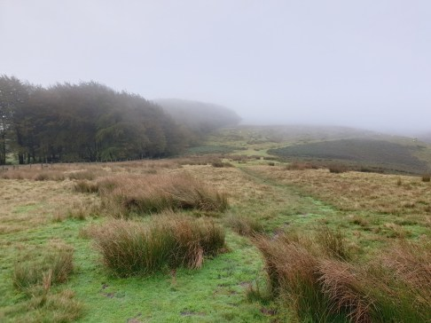 Brown_Clee_Hill_36