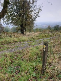 Brown_Clee_Hill_49