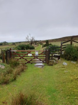 Stiperstones_09
