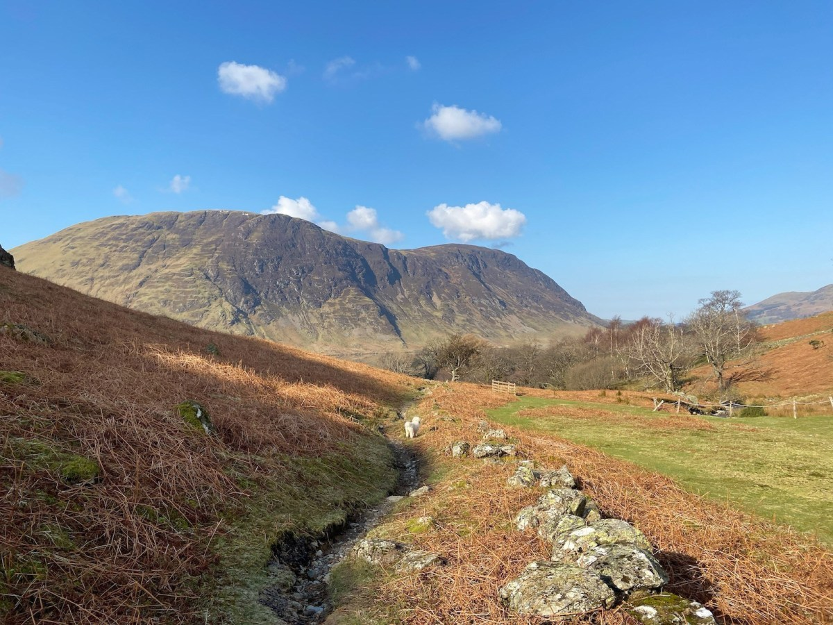 Wak up Rannerdale Knotts from Buttermere