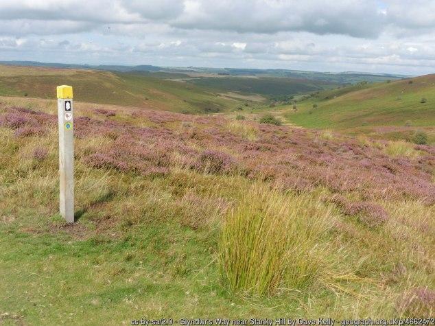 Glyndwr's Way near Stanky Hill
