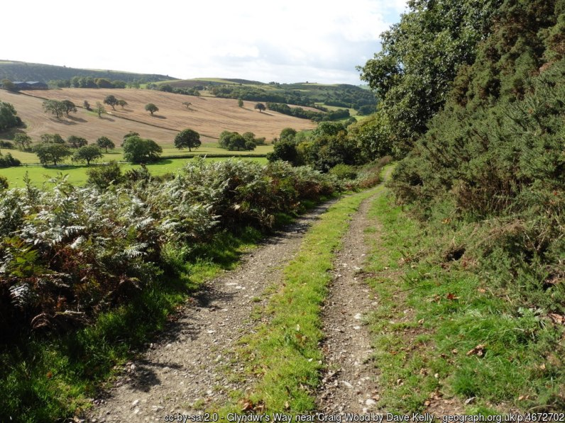 Glyndwr's Way near Craig Wood