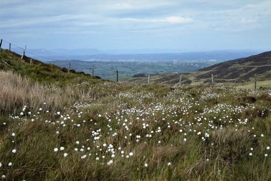 10.1 Walk up Cratlieve - Dromara Hills