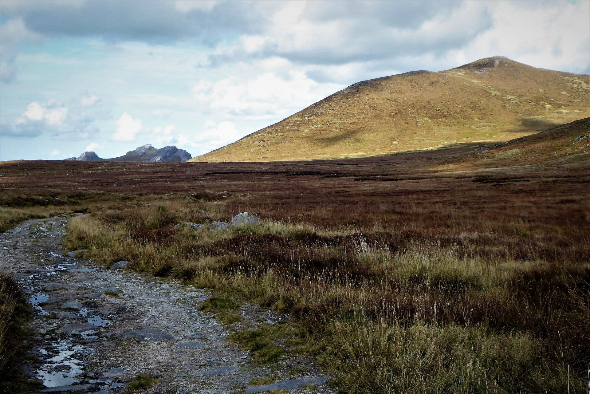 https://walkni.com/mourne-mountains/mourne-way/