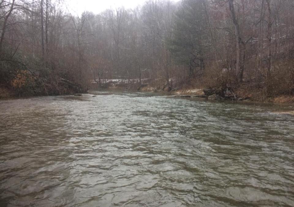 Muddy Creek is full of water at 250cfs.