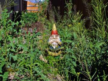 Ryobi found even gnomes were embarrased about some gadrens