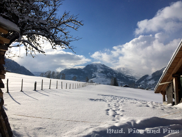 Snow in the Alps | Mud, Pies and Pins
