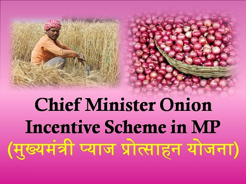 Chief Minister Onion Incentive Scheme in Madhya Pradesh