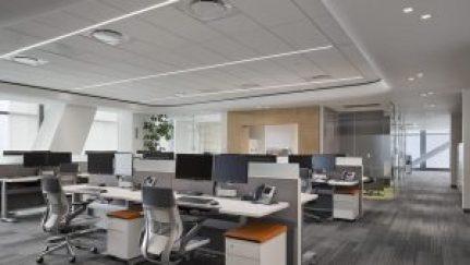 oficinas-en-reforma-con-mayor-desocupacion-desde-2013