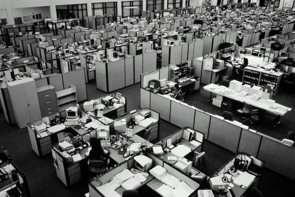 Diseño biofílico de las oficinas: cómo regresar al origen para ser más productivo)