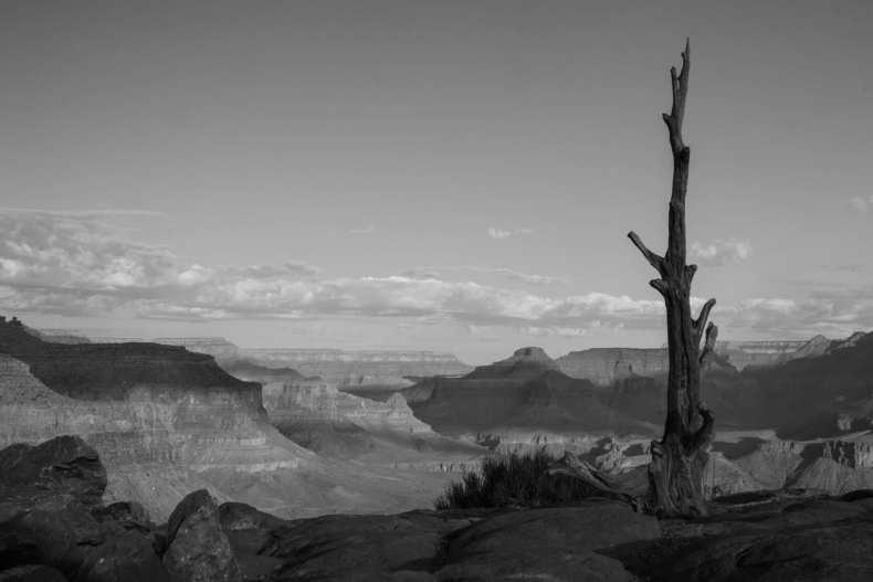 Arizona, BW, Grand Canyon, USA