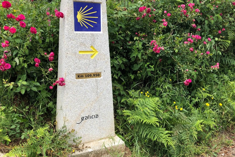 Ein Kilometerstein auf dem Jakobsweg
