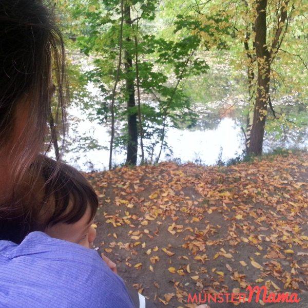 Herbst_Schlossgarten_Muenster