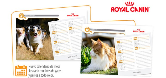 Consigue un calendario 2016 con Royal Canin
