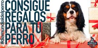 Consigue regalos en el Día Mundial del Perro