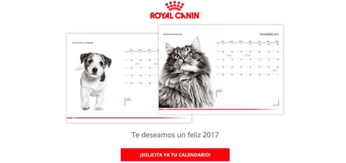 Consigue un calendario 2017 con Royal Canin