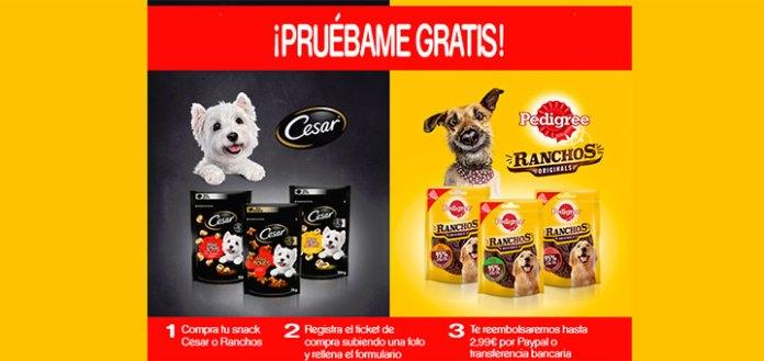 Prueba gratis Snack Cesar o Pedigree