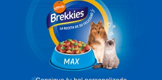 Consigue gratis tu bol personalizado de Brekkies