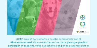 Sorteo Bienestar Animal de Bayer