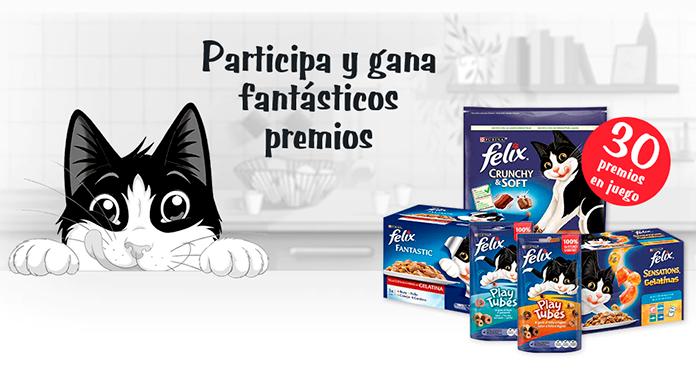 Gana un lote de productos Felix para tu gato