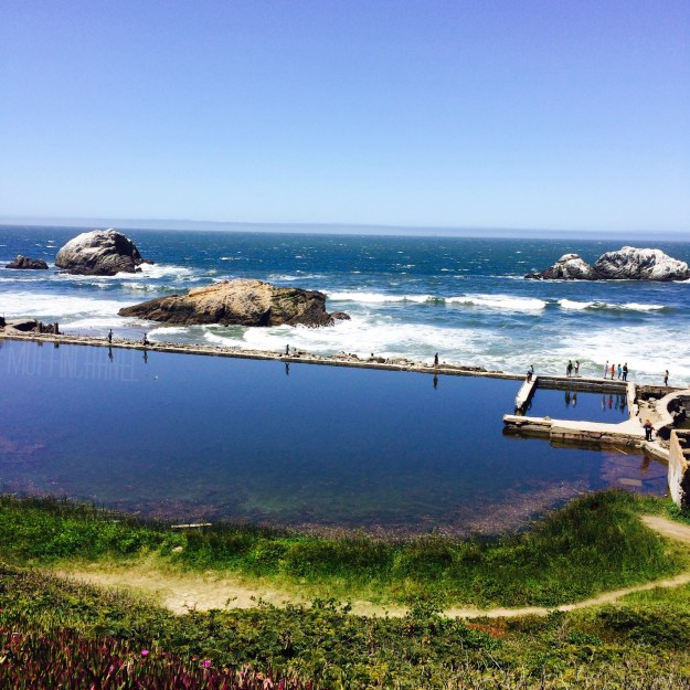 muffinchanel san francisco land's end park sutro baths
