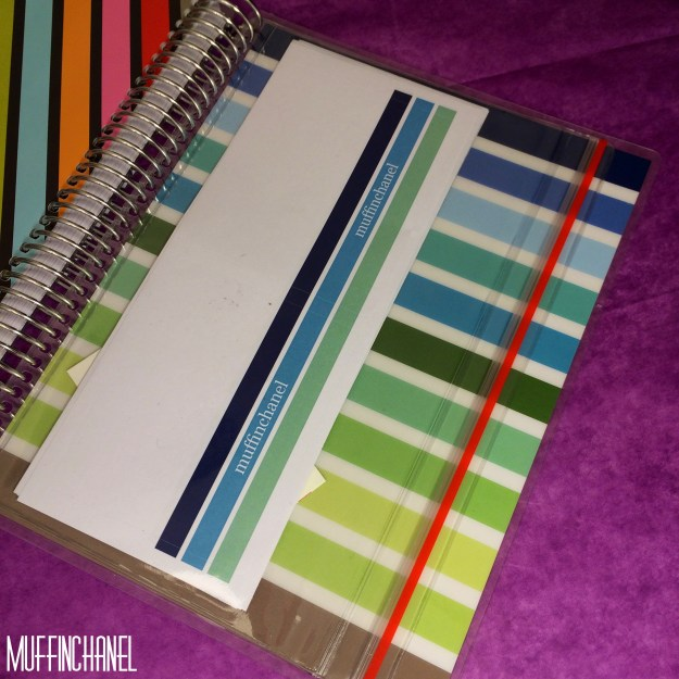 muffinchanel erin condoner life planner 2015 review stripes covers clips calendar wash tape spiral bound 2014 vs 2015 party pops stripes zen gems jolly jester ruler clear pouch