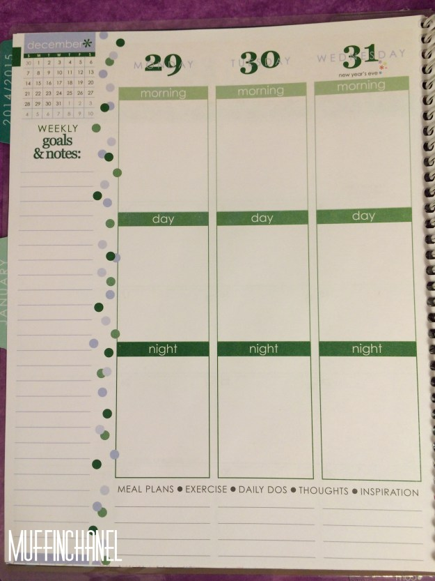 muffinchanel erin condoner life planner 2015 review stripes covers clips calendar wash tape spiral bound 2014 vs 2015 party pops stripes zen gems jolly jester ruler