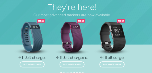muffinchanel Fitbit ChargeHR charge hr fitness band