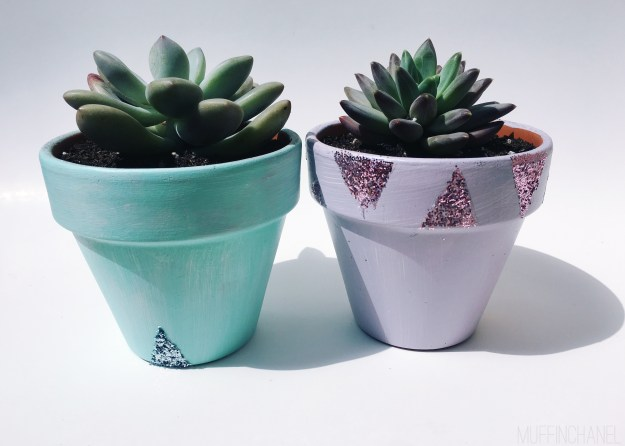 Super cute spring glitter succulent pots diy. Fun project for a spring Saturday. Love the glitter!! muffinchanel. things you need