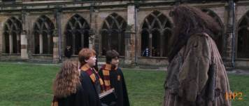 Movie2 - 9th shot - Trio knows about Hagrid's past3
