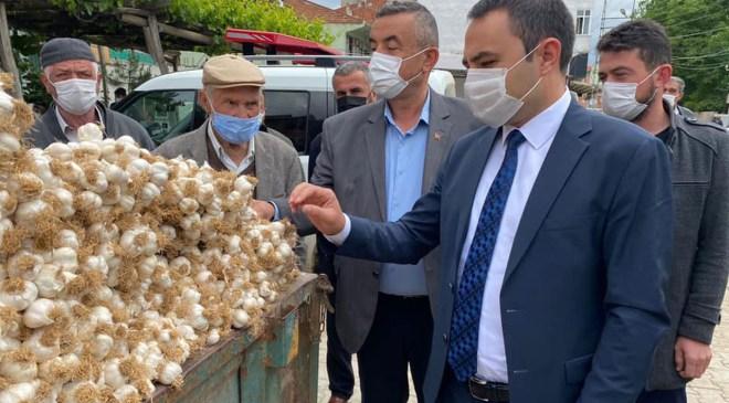 Coğrafi işaretli Taşköprü sarımsağının pazarı Temmuza kadar kurulmayacak