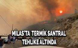 Milas'ta orman yangını termik santrale kadar geldi