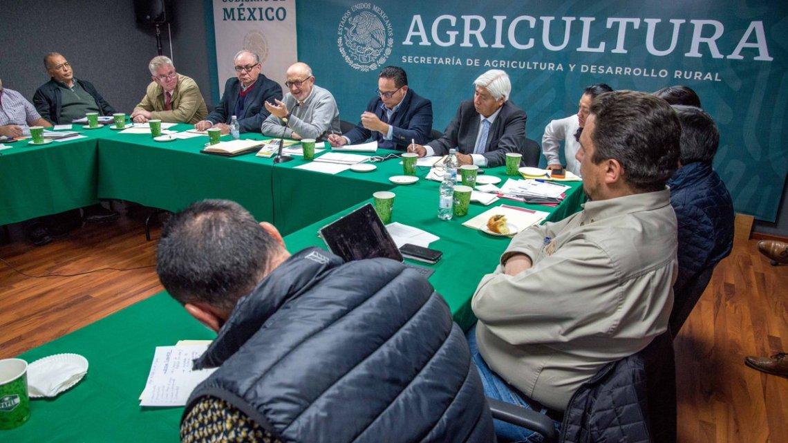 Foto: @Agricultura_mex