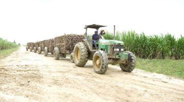 Fotografía: Agricultura