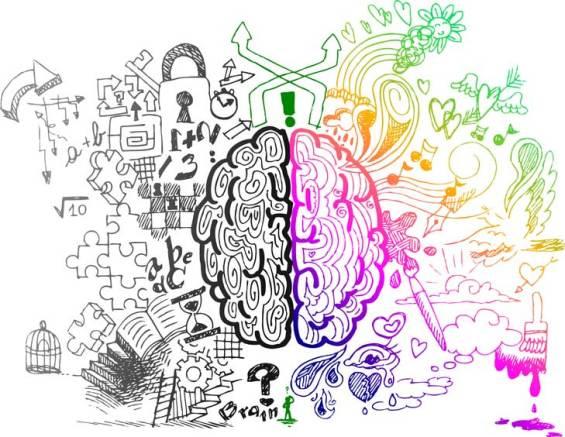 left-right-brain-hemispheres