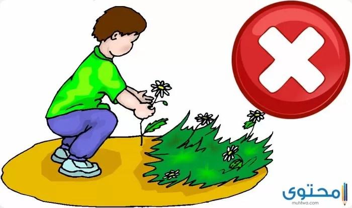 بحث عن طرق الحفاظ على نظافة المدرسة موقع محتوى