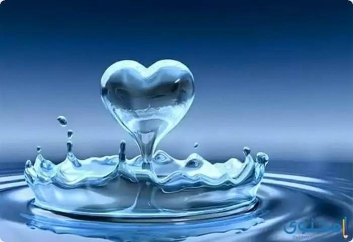 بحث عن أهمية الماء في حياة الإنسان موقع محتوى