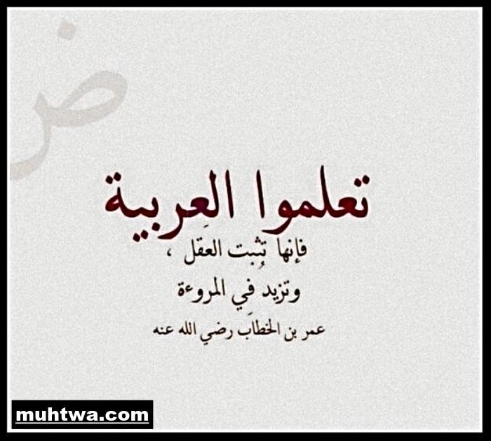 موضوع تعبير عن اللغة العربية 2019 موقع محتوى