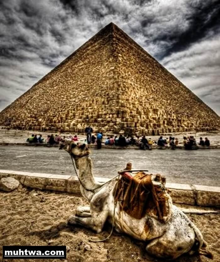 تعبير عن واجبنا نحو السياح بالعناصر الرئيسية موقع محتوى